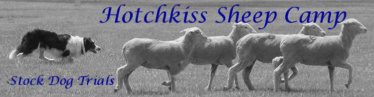 Hotchkiss Sheep Camp Stock Dog Trial